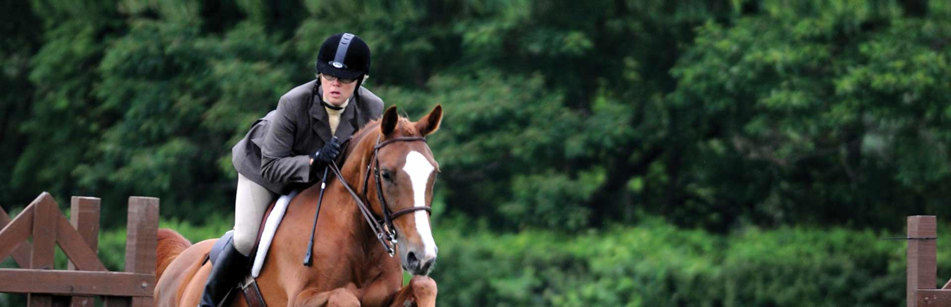 Windermere Equestrian Center Lessons Boarding Shows And Care - 12 equestrian places in the us